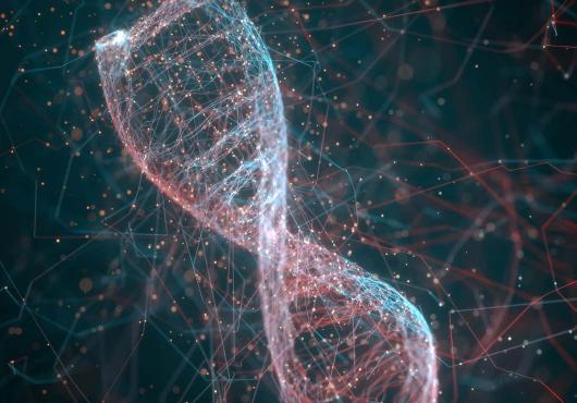 Viral Vectors & Plasmid DNA Manufacturing Market Insights