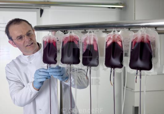 Blood Processing & Consumables Market Will Be Driven by Technological Innovations