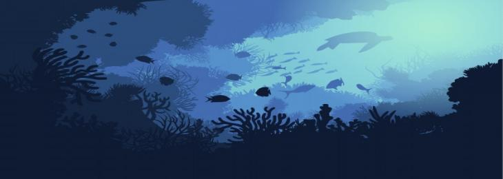 Conserving the Marine Ecosystem Is a Necessity and Not an Option