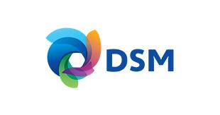 DSM.png