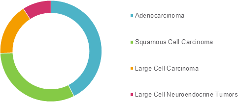 Non-Small Cell Lung Cancer  | Coherent Market Insights