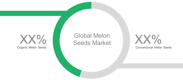 Melon Seeds  | Coherent Market Insights