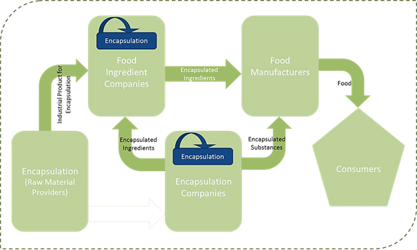 Food Encapsulation  | Coherent Market Insights
