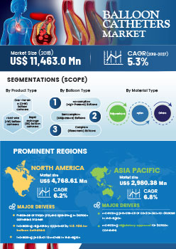 Balloon Catheters Market | Infographics |  Coherent Market Insights