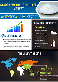 Carboxymethyl Cellulose Market | Infographics |  Coherent Market Insights