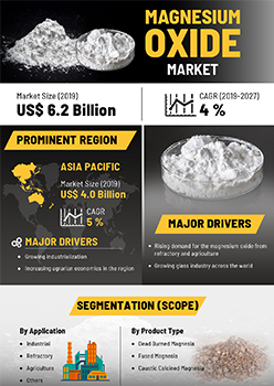 Magnesium Oxide Market | Infographics |  Coherent Market Insights