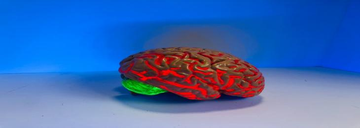 Brain Implant Of Hydrogel Might Excel Where The Others Fail
