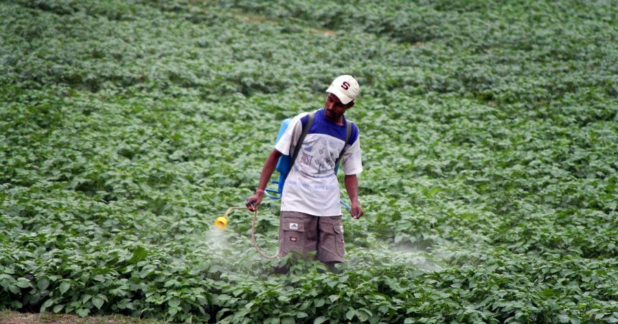 Agrochem Industry Opposes Pesticide Ban