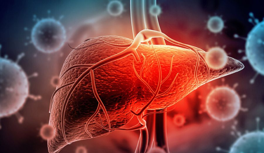 Postmenopausal Women are at Higher Risk for Developing Chronic NAFLD, Study Suggests