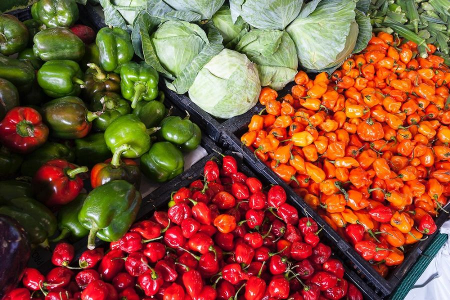 Vegetable-rich Diet, Exercise, and Quitting Smoking to Diminish the Risk of Chronic Kidney Disease, Study Suggests
